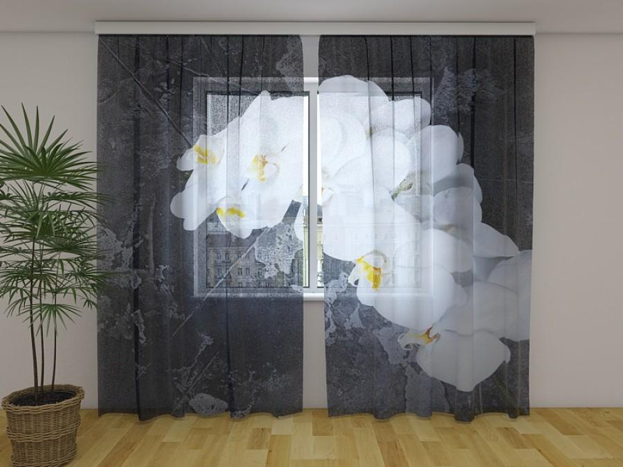 """Dieninė foto užuolaida """"Balta orhidėja"""""""