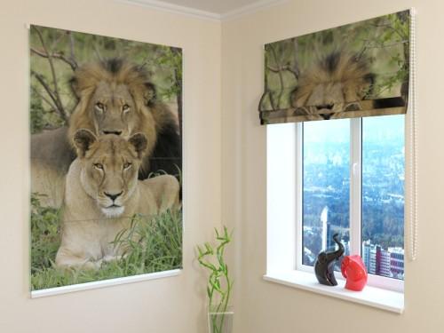 "Romanetė "" Family Lions"""