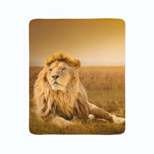 """Pledas """"Liūtas karalius"""""""