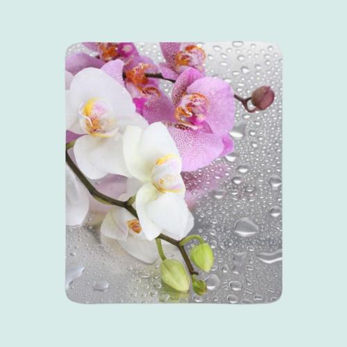 """Pledas """"Orchidėjos lietuje"""""""