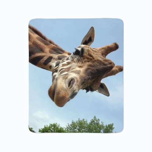 "Pledas ""Žirafa"""
